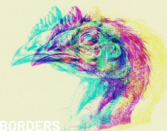 chicken head illustrated by Jean Bernard, public domain